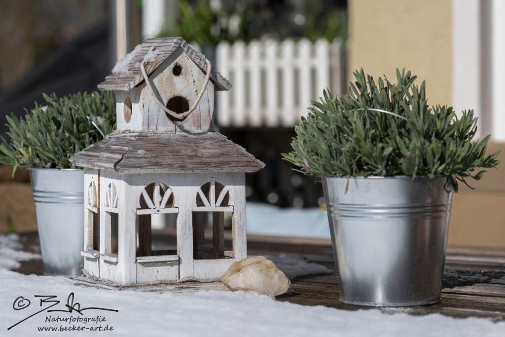 becker-art Bayern Schnee Garten Idylle Vogelhaus Lavendel