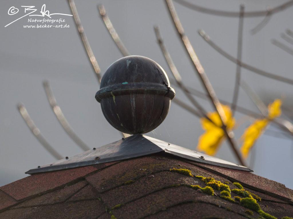 becker-art Bayern Garten Idylle Dach Kupfer Gegenlicht