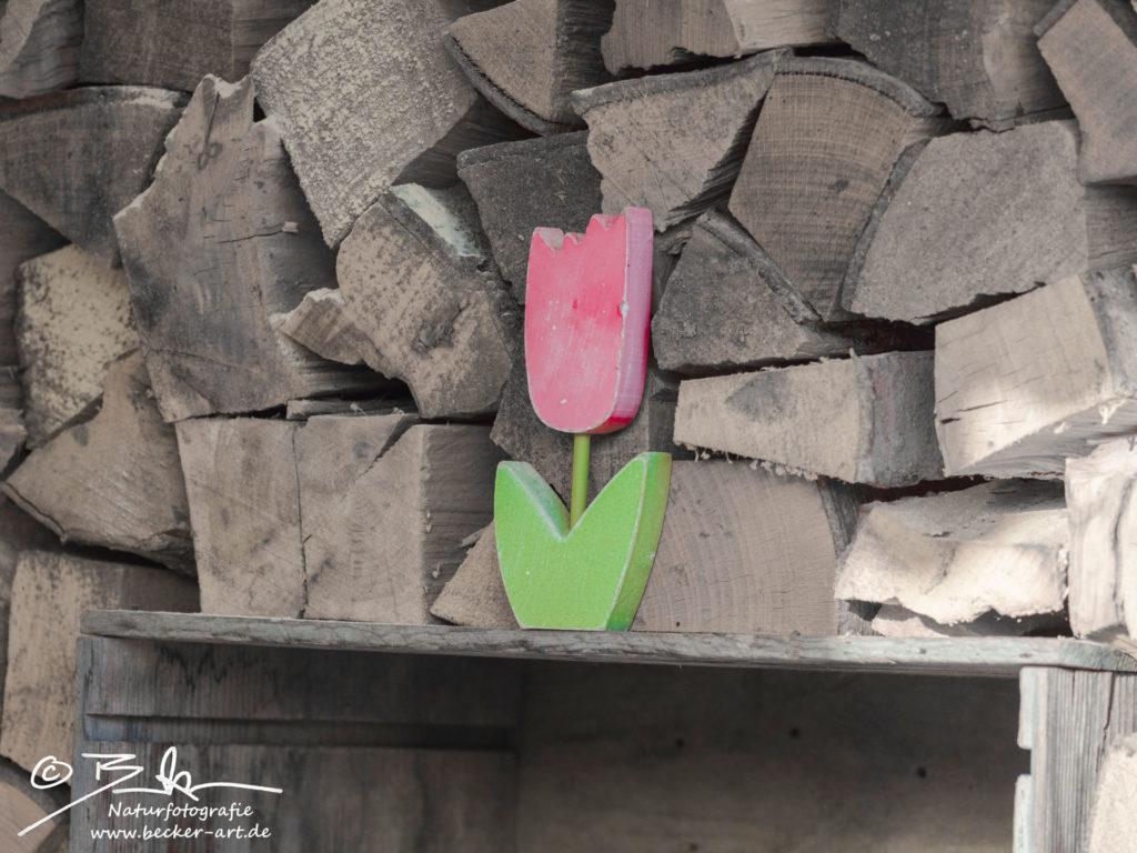 becker-art Bayern Garten Idylle Holzstapel Blume