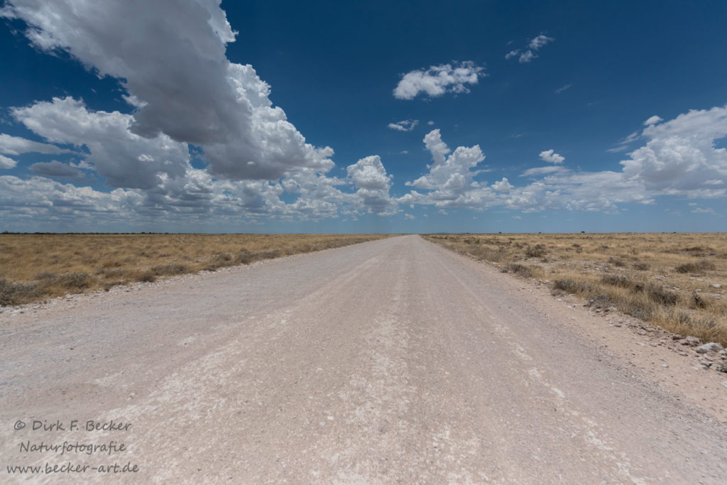 becker-art Natur Afrika Namibia Himmel Wolken Straße Weite