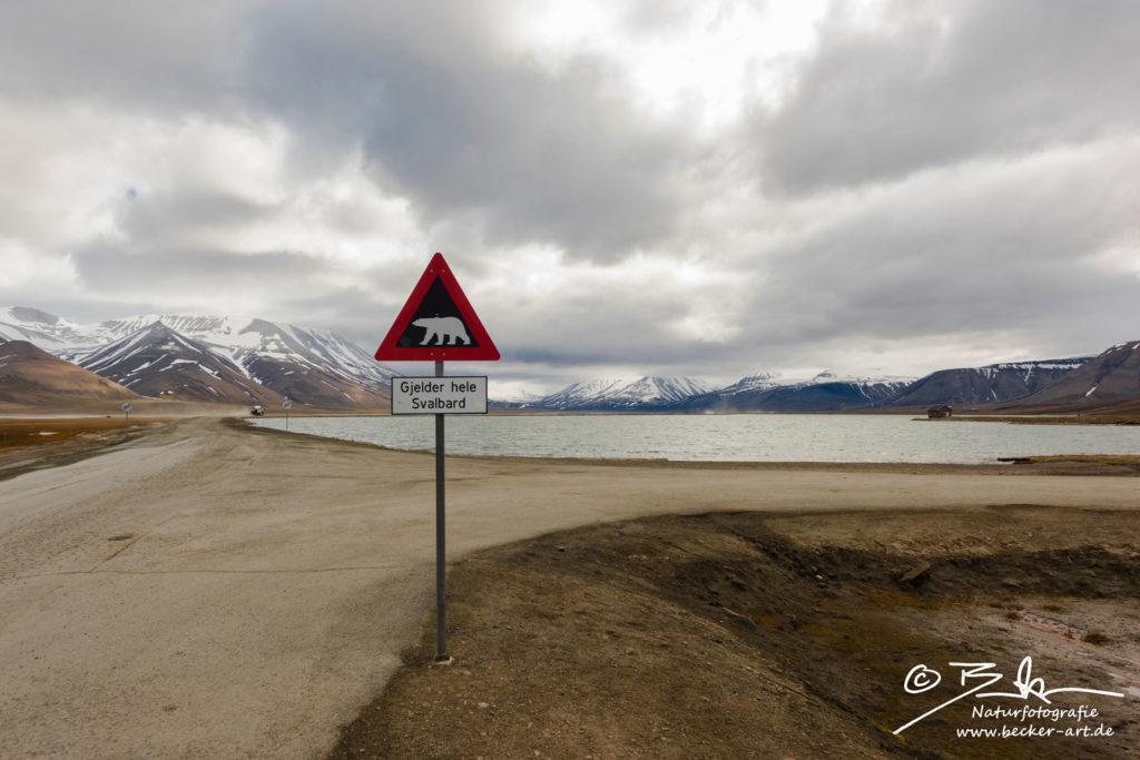becker-art Natur Spitzbergen Svalbord Himmel Wolken Berge Meer Eisbaer Schild Gjelder hele Svalbard